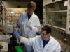Levi Palmer engages in research in the Frontiera Lab